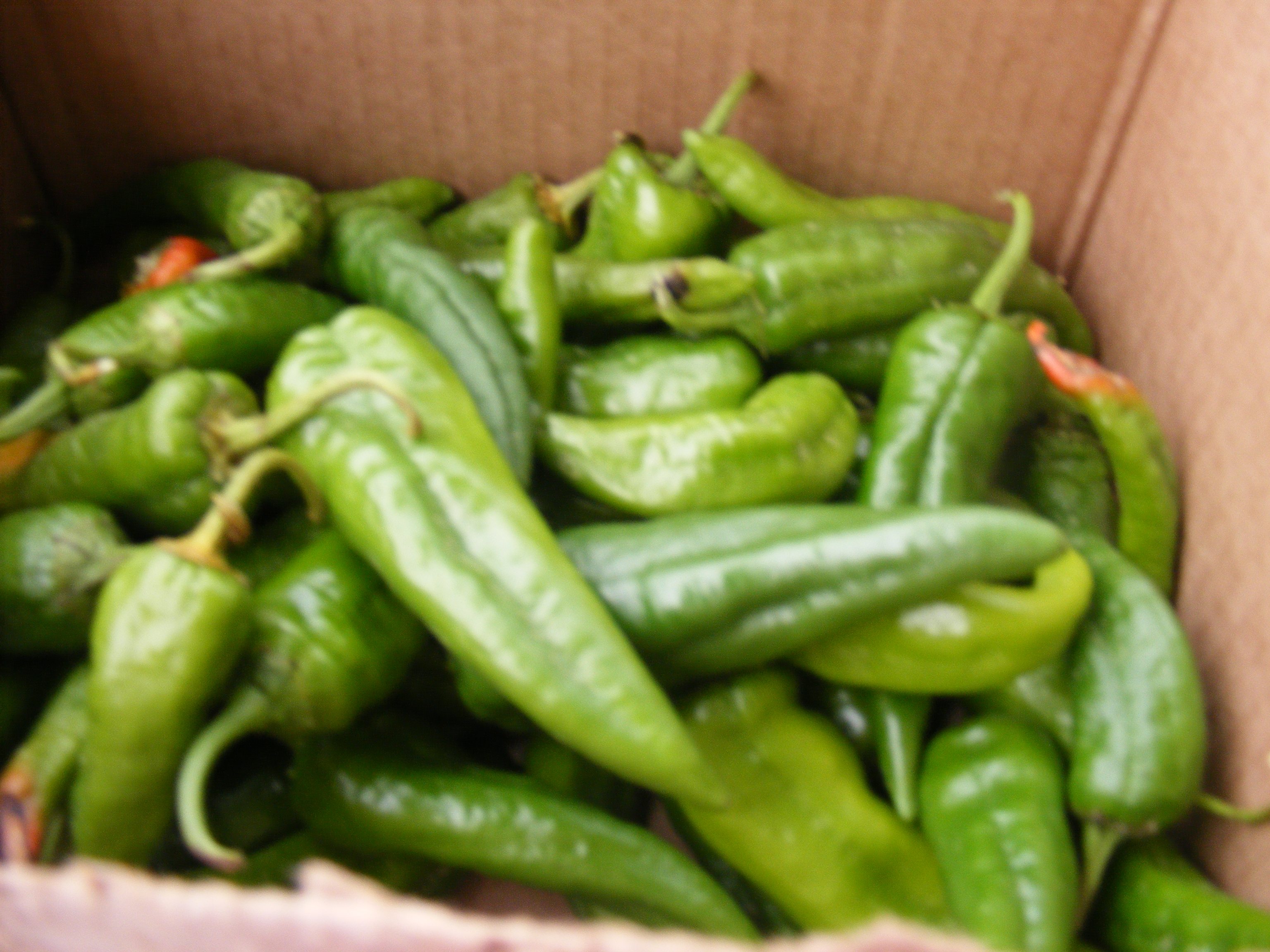 Peppers harvested from the garden. Photo Source: Frank and Kay Whatley.