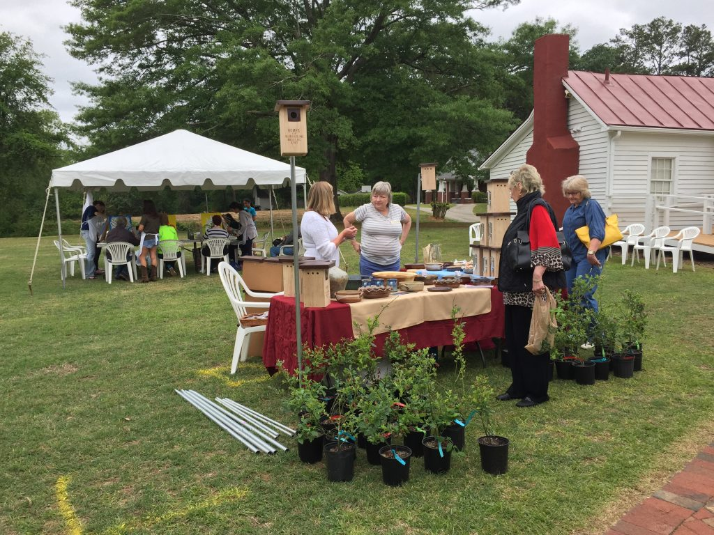 Finch's Blueberries, Pottery, and Homes for Bluebirds at the Country Doctor Museum (Bailey NC) during special event April 30, 2016. Photo: Kay Whatley.