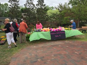 Southern Roots Nursery at the Country Doctor Museum (Bailey NC) during special event April 30, 2016. Photo: Kay Whatley.