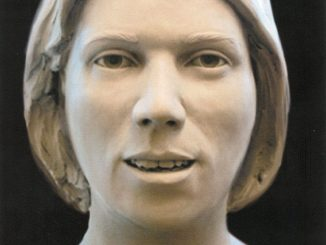 On February 3, 1991, the remains of a possibly mixed ancestry (black and white) Hispanic female were found along the medium strip of Interstate 95 in Stafford County. She is believed to have been 25-35 years of age. Released by the OCME, Richmond VA.