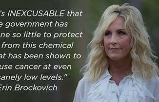 Erin Brockovich quote. Source: Environmental Working Group, ewg.org.