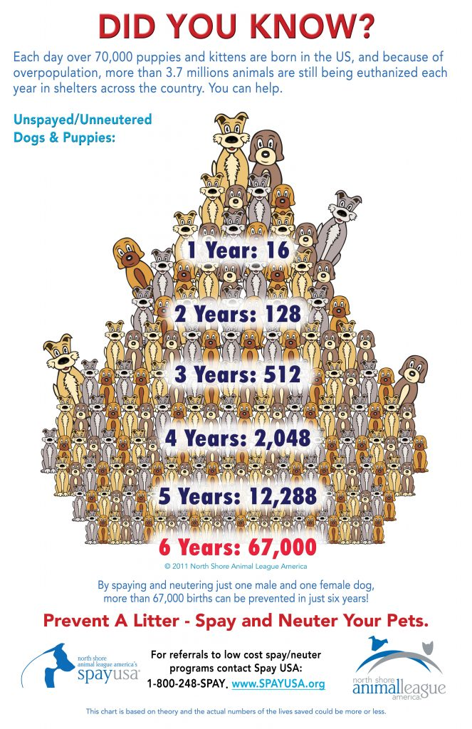The dog population pyramid, by Spay USA, published with their permission.