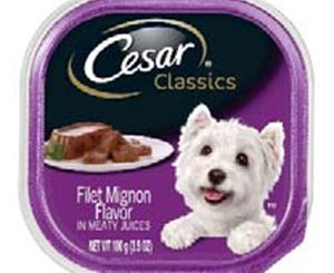 CESAR® Classics Filet Mignon Flavor Wet Dog Food is recalled for potential plastic contamination. Label released by FDA.gov with recall notice.