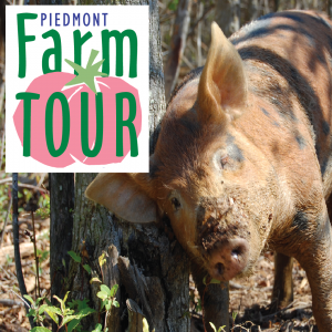 Piedmont Farm Tour 2017 poster. Source: Carolina Farm Stewardship Association, Pittsboro NC.
