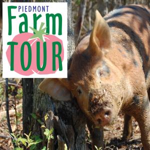 Piedmont Farm Tour 2017 poster. Source: Carolina Farm Stewardship Association, Pittsboro NC.