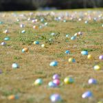 Eggs awaiting the hunt. Source: Town of Knightdale, North Carolina.
