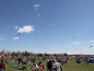 Kite Festival 2014. Source: Maria VanderKolk, arvada.org.