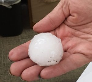 Hailstone from Denver, Colorado storm May 8, 2017. Source: N. Banks.