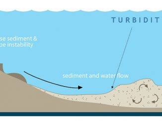 Schematic diagram illustrating a slope failure on a continental margin caused by either a local or distant earthquake, similar to a terrestrial landslide. On the upper part of the continental margin near the shallow continental shelf, shaking from the earthquake dislodges loose sediment, which flows downhill and entrains sea water, becoming more fluid and more turbulent. This chaotic motion of fluid within the sediment flow sustains the turbidity current, which can flow for hundreds of kilometers once it reaches the deep abyssal plain. Credit: NOAA