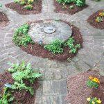 Herbs shown growing in a garden (Country Doctor Museum herb garden in Bailey NC). Photo: Nadia Ethier.