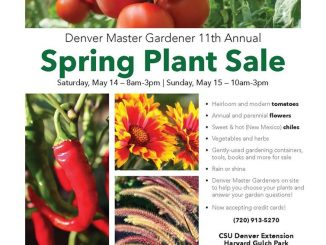 Denver CO Master Gardeners Plant Sale is May 14-15, 2016. Source: CSU Denver Extension - Horticulture Program, Denver CO.