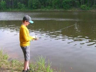 Falls Lake Youth Fishing Tournament, Raleigh NC. Source: www.ncparks.gov.
