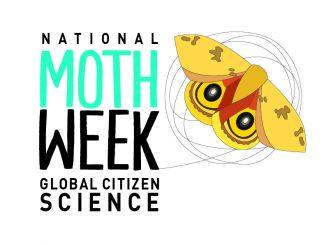 National Moth Week Logo. Source: nationalmothweek.org.