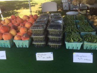 Produce at a farmer's market. Source: Kay Whatley.