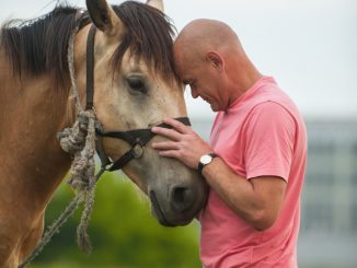 Two Bears Ranch will offer equine therapy, which has shown evidence of reducing the lingering and sometimes debilitating symptoms of PTSD, to US veterans. Source: PRNewsFoto/Two Bears Ranch, Durango CO.