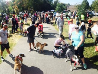 A scene from the 2015 Dogtoberfest in the Town of Knightdale. Source/Copyright: All rights reserved by Knightdale NC.