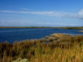 The Currituck Sound in North Carolina. Source: Southern Environmental Law Center.