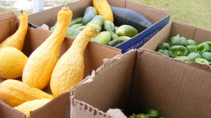 Some grant recipients work to get locally grown fruits and vegetables to food insecure families. Photo: Frank and Kay Whatley.