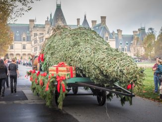 When a 34-foot-tall Fraser fir tree is brought into Biltmore House, it's a sure sign that Christmas is just around the corner. This week, Santa Claus, aboard a horse-drawn carriage, ushered the massive tree to the home that George Vanderbilt opened to his friends and family on Christmas Eve 1895. Christmas at Biltmore starts officially November 4, 2016, and runs through January 8, 2017. Source: PRNewsFoto/The Biltmore Company, Asheville NC.