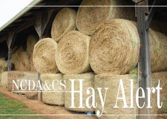 NCDA&CS Hay Alert graphic