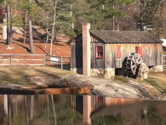 Perry's Mill Pond in Louisburg NC. Photo: Frank Whatley.
