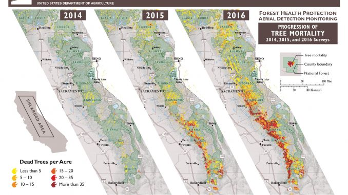 Progression of Tree Mortality Map: 2014, 2015, and 2016 Surveys. Source: US Forest Service.