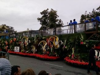 2017 Tournament of Roses Surfin' Dog Float, sponsored by The Lucy Pet Foundation and American Wave Machines. Source: American Wave Machines.