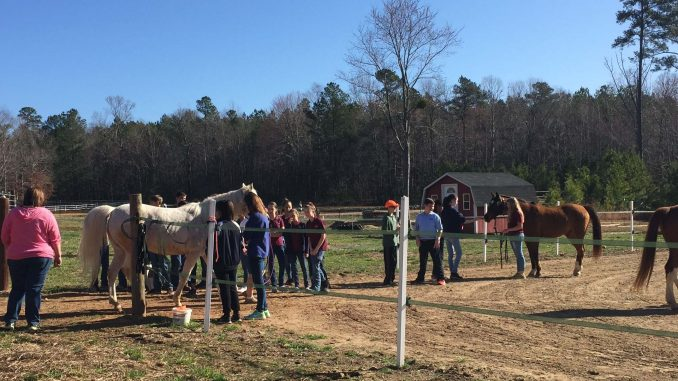 East Wake Academy students and Kindred Spirits Farm horses. Photo: Kay Whatley