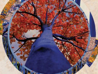The Blue Trees Poster. Source: Denver Theatre District/Blake Communications.