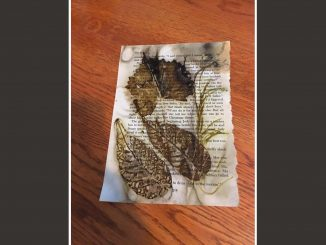 """""""Eco Printing and Journaling with Nature"""" workshop offered July 22, 2017."""