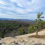 DuPont State Recreational Forest . Photo source: dupontforest.com