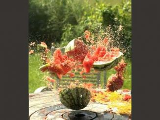 Watermelon bursting. Source: Zebulon Farm Fresh Market, Zebulon NC