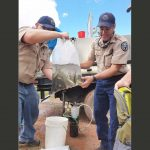 CPW staffers prepare native Colorado River cutthroat trout for stocking north of Durango on July 27, 2017. Source: Colorado Parks and Wildlife