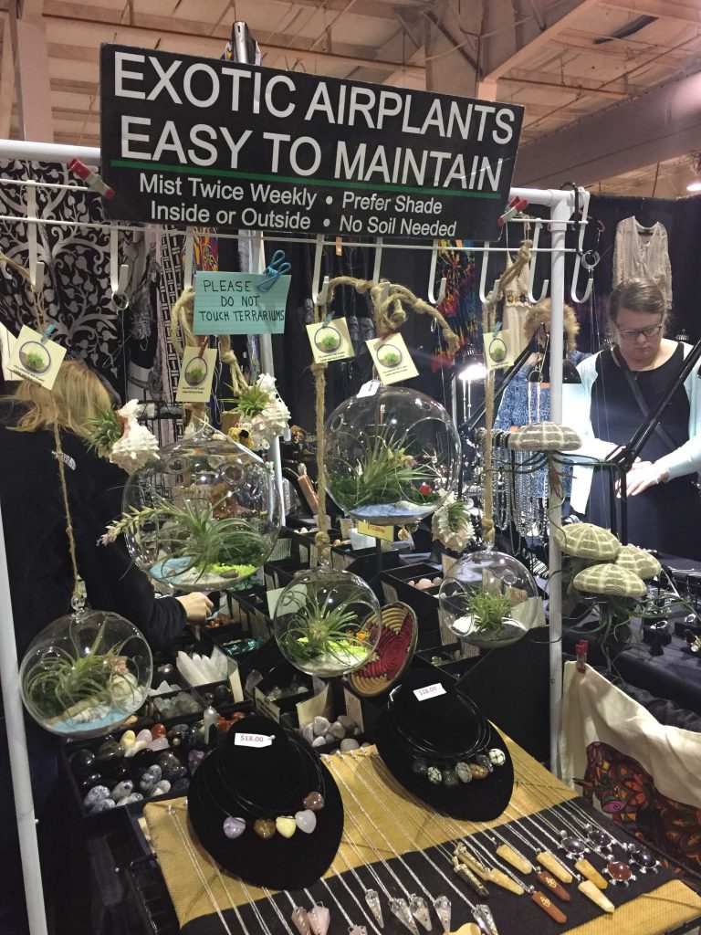 A market vendor selling trendy airplants at the Raleigh Greek Festival 2017. Photo: Kay Whatley