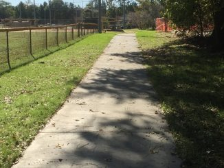 Section of the new Wendell NC walking trail. Source: Sherry L. Scoggins, Town of Wendell, North Carolina