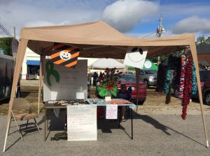 Vendor fundraising for local resident's healthcare needs, National Pumpkin Festival 2017, Spring Hope NC. Photo: Kay Whatley