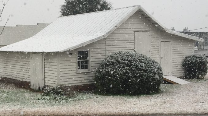 Snow falling on January 17, 2016 in Eastern NC. Photo: Kay Whatley