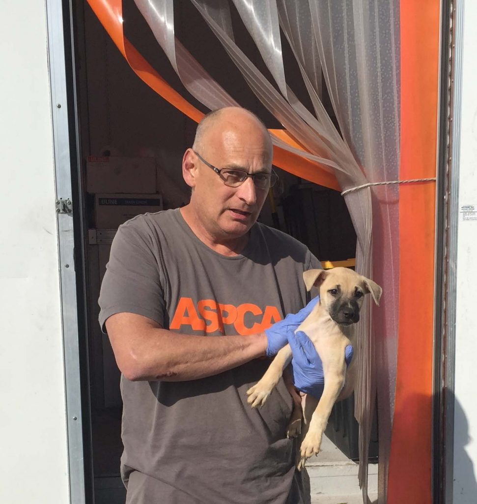 ASPCA handing off one of the last pups. Photo: Kay Whatley