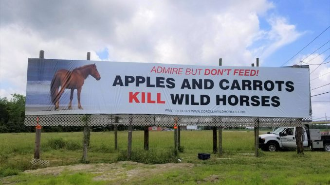 "Billboard erected as part of the wild horse ""No Feed, No Approach"" educational initiative. Corolla Wild Horse Fund"