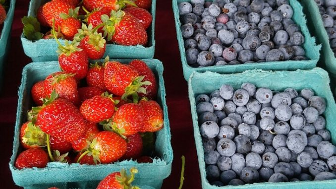 Fruits at the Zebulon Farm Fresh Market. Source: Cindy Brookshire