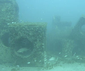 Concrete castings re-used as artificial reef materials. Source: NC Department of Marine Fisheries