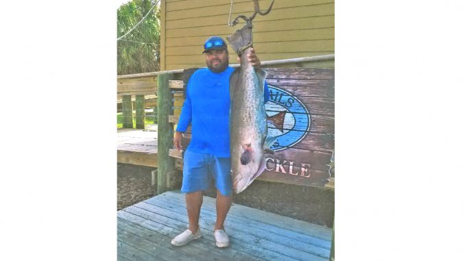 State Record Gag Grouper (48 pounds 0 ounces) caught by Louis Guzman off Morehead City, North Carolina on May 24, 2018. Source: Division of Marine Fisheries NC