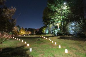 Lighted path for Moonlight in the Garden. . Source: JC Raulston Arboretum at NC State University