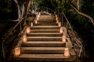 Lighted stairs for Moonlight in the Garden. . Source: JC Raulston Arboretum at NC State University