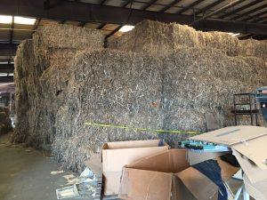Kenaf bales stored at the Bunn NC farm. Hemp processors also process kenaf for its fiber. Photo: Kay Whatley