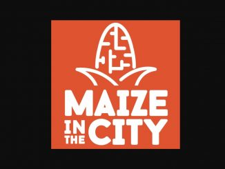 Source: Maize in the City, Thornton, Colorado