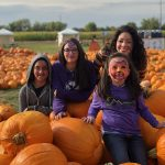 So many pumpkins from which to choose at Maize in the City. Photo: Nicole Banks