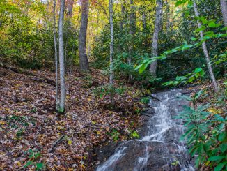 Miles of streams and waterfalls are protected within High Hickory conservation preserve. Source: Southeast Regional Land Conservancy