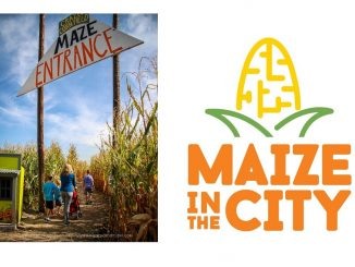 Source: Cristina Palombo, Maize in the City