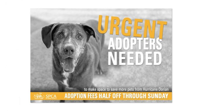 Shelter space needed for Hurricane Pets. Adoption discount at SPCA Wake.